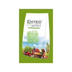 ENTEC PERFECT - 2,5 KG
